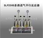 SLP2500多路进气平行反应器