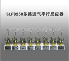 SLP8250多路进气平行反应器