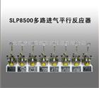SLP8500多路进气平行反应器