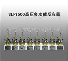 SLP8500高压多功能反应器