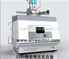E系列250ML微型高压反应釜