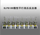 SLP8100微型平行高压反应器