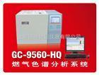 燃气(天然气、液化气、煤气)色谱分析系统