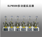 SLP6500多功能反应器