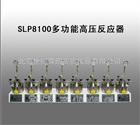 SLP8100多功能高压反应器