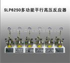 SLP6250多功能平行高压反应器