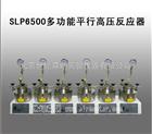 SLP6500多功能平行高压反应器