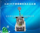 SLM100不锈钢微型高压反应器