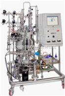 SB/SBS意大利solaris生物反應器