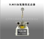 SLM25加氢微型反应器