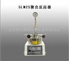 SLM25聚合反应器