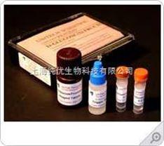 银杏酸(C13:0)