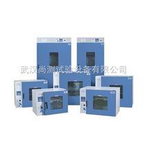 DGG系列立式电热恒温鼓风干燥箱