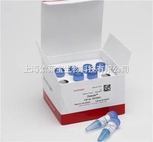 Invitrogen 博萊霉素 zeocin R250-01
