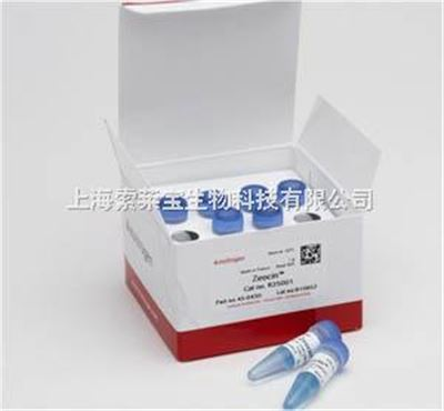 Invitrogen 博莱霉素 zeocin R250-01