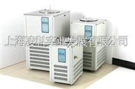 DLSB-10L(10℃-120℃)低温冷却液循环泵