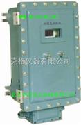 防爆氢分析仪