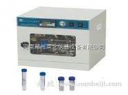 LF-I分子雜交爐生產廠家