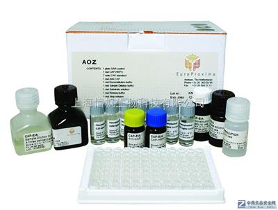 大鼠环磷酸腺苷(cAMP)ELISA Kit