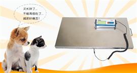 30千克寵物電子秤