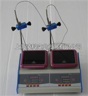 ZNCL-DLSZNCL-DLS智能两联磁力(加热板)搅拌器
