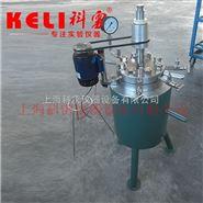0.1L1L不锈钢高温高压反应釜