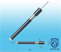 8202-10C钾离子电极