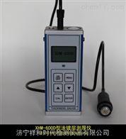 XHM-600D漆膜测厚仪