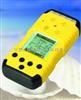 BX11-H2S擴散式硫化氫檢測儀1 氣體檢測儀 環境檢測儀