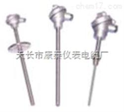 WZP2-130双支铂热电阻/PT100