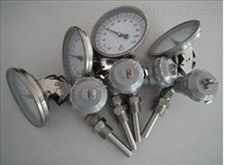 WSSXE-481温度计/供应厂家
