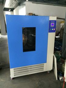 HSX-500立式恒溫恒濕培養箱