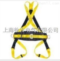 双挂点交叉式全身安全带