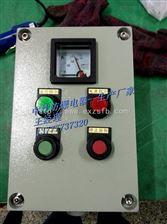 LBZ58-A2D2B1G防爆操作柱防爆操作按钮控制箱防爆就地控制箱LBZ58-A2D2B1G