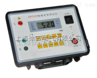 GW3125绝缘电阻测试仪