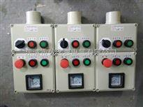 工地防爆操作箱bec56-a2d2k1g,2钮2灯1开关挂式