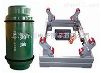 DCS-G供应称液化气钢瓶用电子秤、不锈钢防腐钢瓶秤