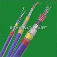 BP-VVP2BP-VVP2变频电缆3X95+3价格 变频电缆器电缆