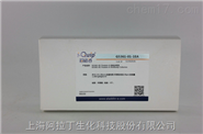 芯硅谷Protein A 抗体分析柱