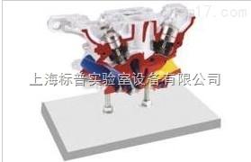 奥迪5阀气缸盖解剖模型 汽车解剖实训装置