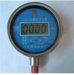 济南特价供应LDX-CCY-CYB-带背光灯型数字压力表新款