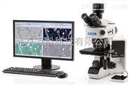 BX53M 新一代金相显微镜BX53M