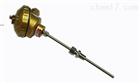 WRNK-231铠装热电偶固定卡套螺纹装置式