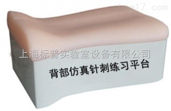 背部仿真针刺练习平台|中医专科训练模型