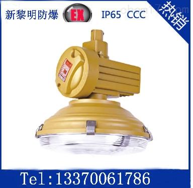 供应森本SBD1120免维护节能防爆道路灯,防爆无极灯
