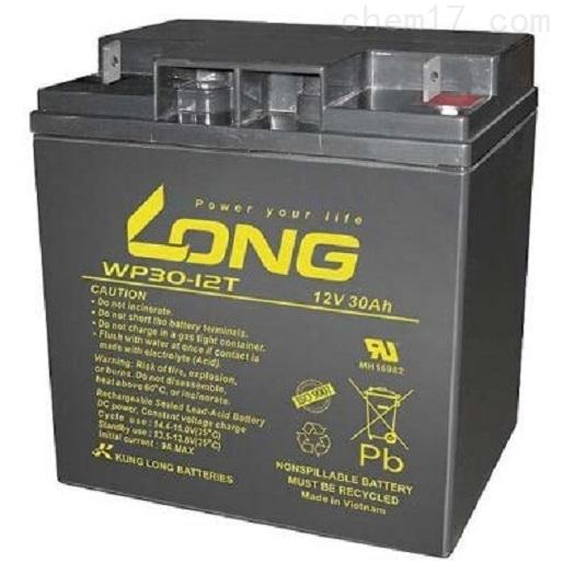LONG广隆蓄电池WP30-12T原装报价