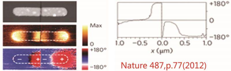 qd中国建成高分辨近场光学显微镜neasnom样机实验室