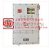 BXP型Bxp型隔爆配电箱