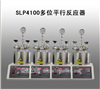 SLP4100多位平行反应器