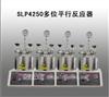 SLP4250多位平行反应器
